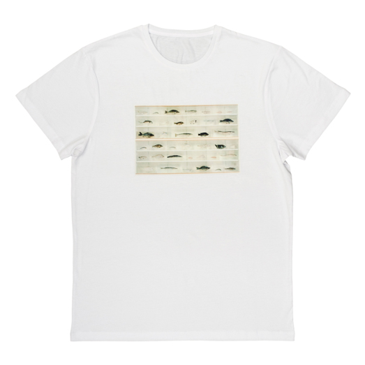 DH-isolated_elemtns_tshirt_front_black